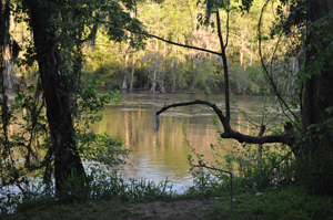 The Flint River in Albany, Georgia