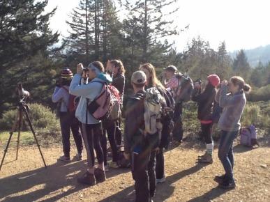 Field Study on Mt. Tam